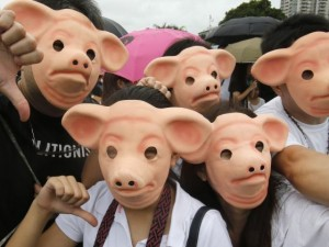 Protesters wear pig masks to send a dramatic message.
