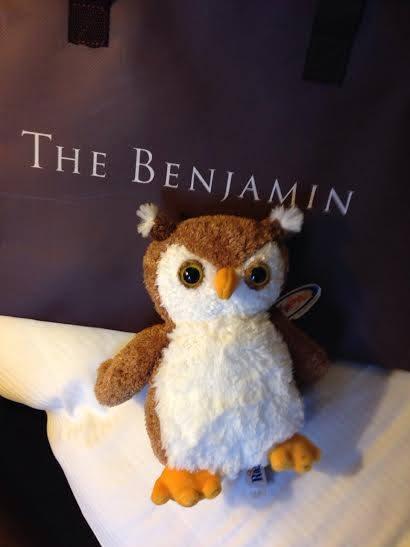 benjamin-owl-jpg
